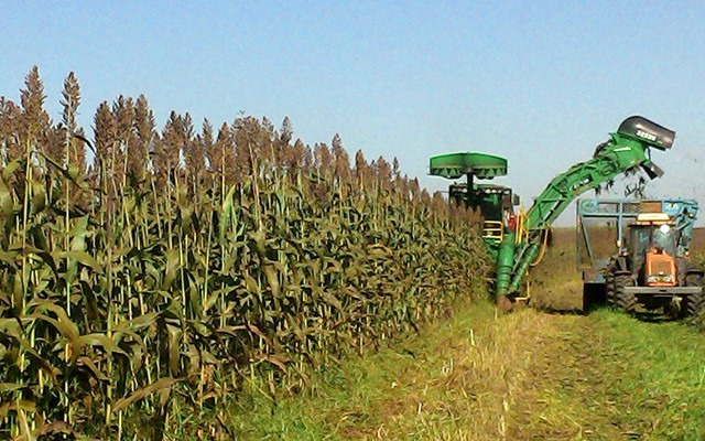 Sweet Sorghum Complementing Ethanol Production in Sugar Mills