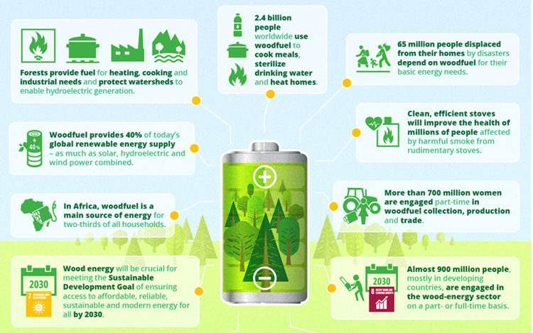 Forests and Energy