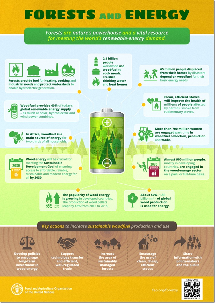 FAO-infographic-Forests-and-Energy_v8